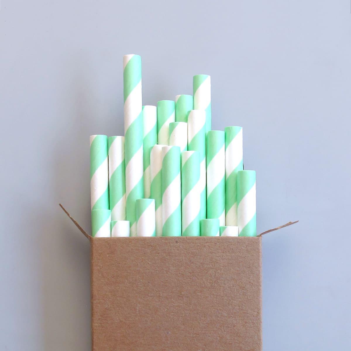 Paper Straws Mint