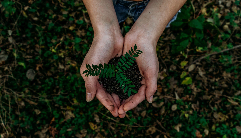 EcoPackHeroImage
